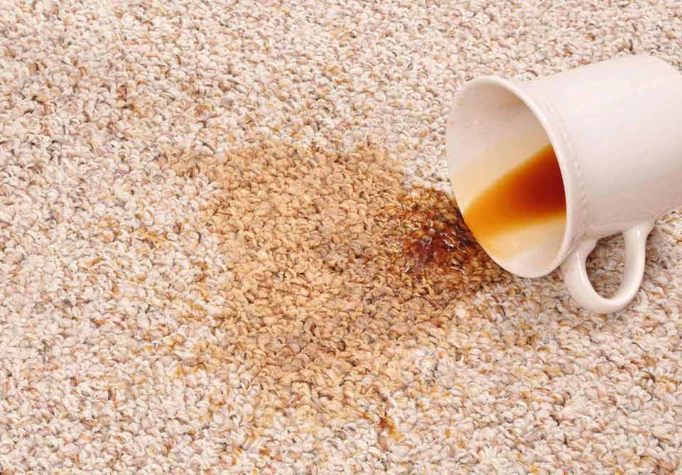 kahve lekesi olan halı